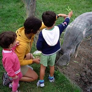 Casas rurales con niños Agroturismo Vacaciones en la Granja